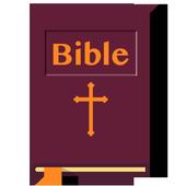 Pocket Bible icon