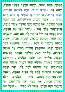 מגילת אסתר כללי כתב קטן ורעשן poster