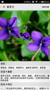 那些花儿——常见花卉辨识 apk screenshot