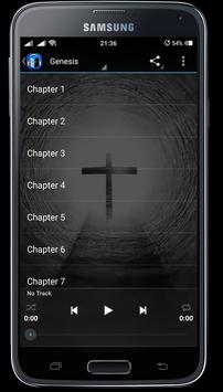 Audio Bible Daily apk screenshot