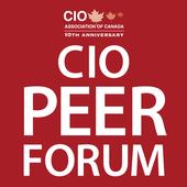 CIO Peer Forum 2014 icon