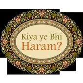 Kiya Ye Bhi Haram icon