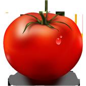 Rajčica icon