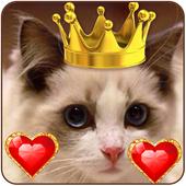 Princess crown love icon theme icon