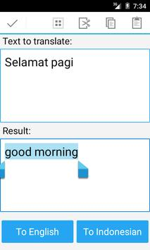Indonesian English Translator apk screenshot