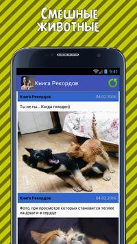 Книга Рекордов apk screenshot