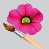 Combo Designer icon
