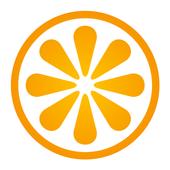 VisitBasis Retail Execution icon