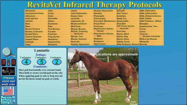 RevitaVet Infrared Therapy poster
