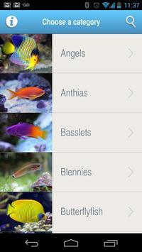 POTO's Guide apk screenshot