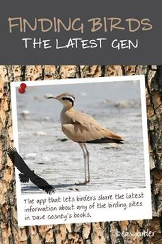 Finding Birds poster