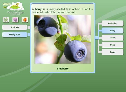 Biology - Plant Morphology apk screenshot