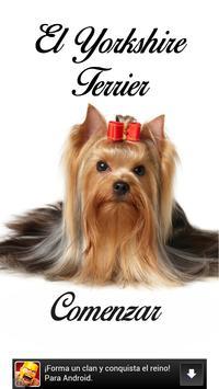 El Yorkshire Terrier poster