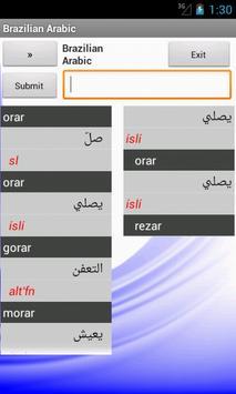 Brazilian Arabic Dictionary poster