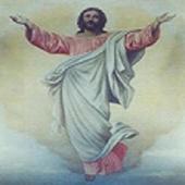 Bible Reading I icon