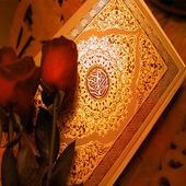 Flash Quran icon