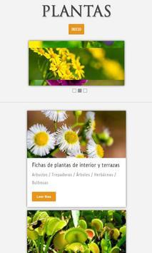 Plantas poster