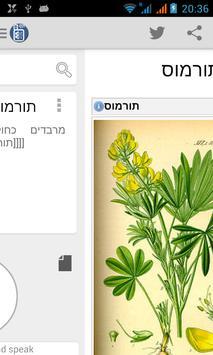 Hebrew Wikipedia Offline ABS apk screenshot