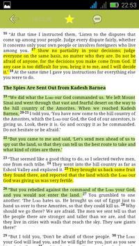 NLV Bible apk screenshot