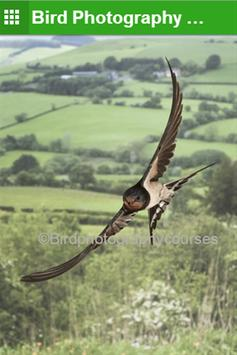 Bird Photography Courses poster