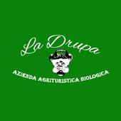 La Drupa icon