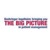 The Big Picture icon