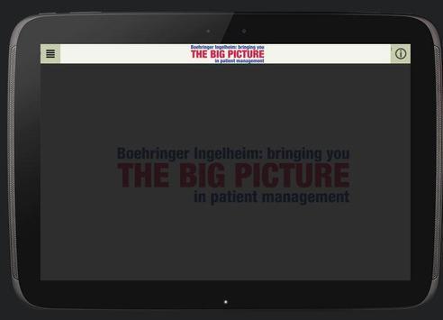 The Big Picture apk screenshot
