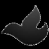 Blackbird Messaging Svc Beta icon