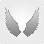 ToAngel icon