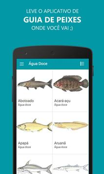 Fish Guide poster