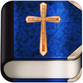Bible in Afrikaans icon