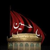 GauharNaqvi icon