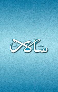 Daily Salar poster