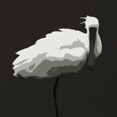 Xuan Thuy Birds icon