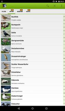 Die Vogel App! apk screenshot