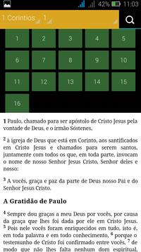Biblia Sagrada - NVI apk screenshot