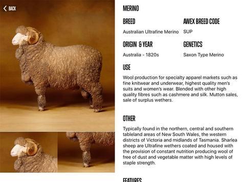 Sheep Breeds by AWEX apk screenshot