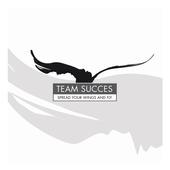 Team Succes icon