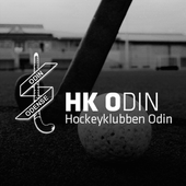 HK Odin icon