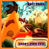 BEST ANGRY BIRD EPIC TIPS icon