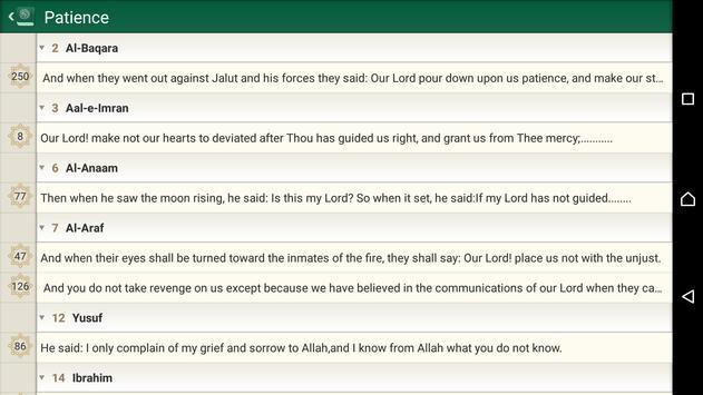 Al Quran Lite apk screenshot