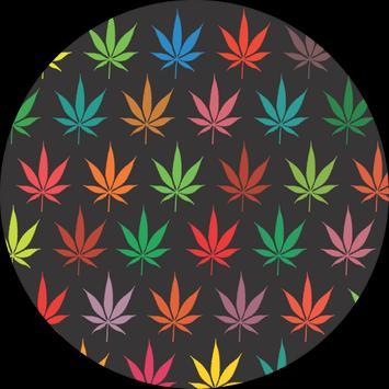 Cannabis News apk screenshot