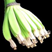 Banana Weed Identification icon