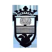 Aliaguilla Informa icon
