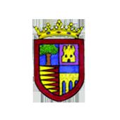 Sardón de Duero Informa icon