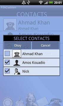 PINCushion apk screenshot