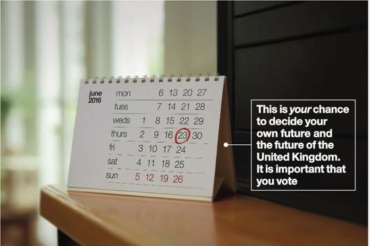 EU Referendum Leaflet apk screenshot