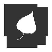 Бесы. Достоевский.БЕЗ РЕКЛАМЫ icon