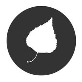 Дворянское гнездо. Тургенев icon