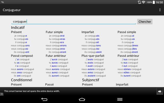 French Conjugator apk screenshot